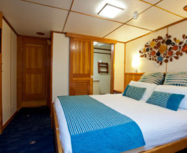 Spirit of Freedom - The Stateroom_View